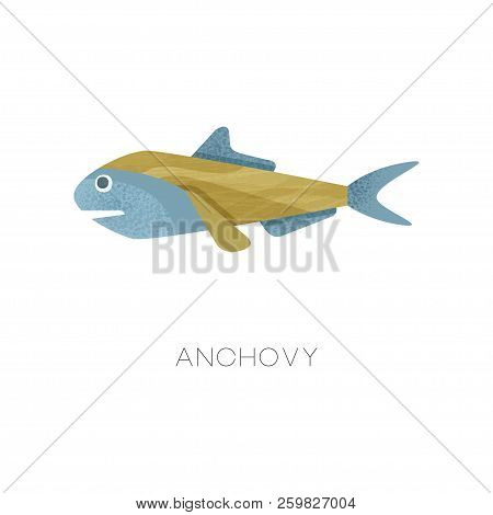 Illustration Of Small Anchovy. Sea Fish. Marine Creature. Ocean Life Theme. Flat Vector Icon With Te