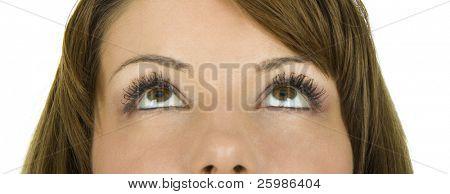 Beautiful brown eyes looking up