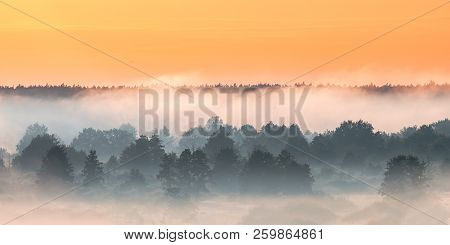 Misty Landscape. Scenic View. Morning Sky Above Misty Forest. Summer Nature Of Europe