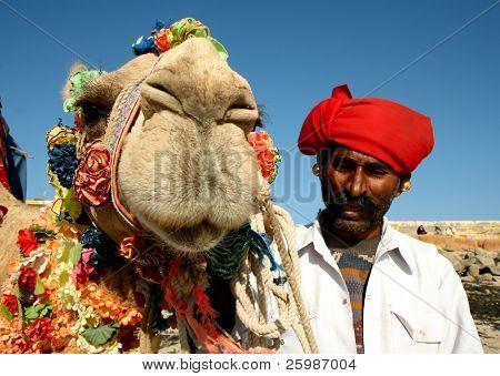 Head of a camel on safari - desert,  India
