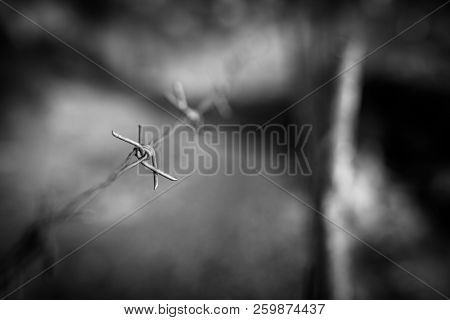 Barbwire fence, dramatic concept of war and prison and slavery poster