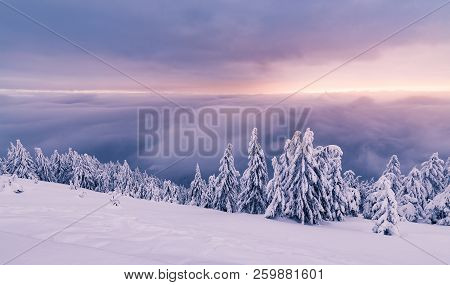 Morning Snowy Mountains