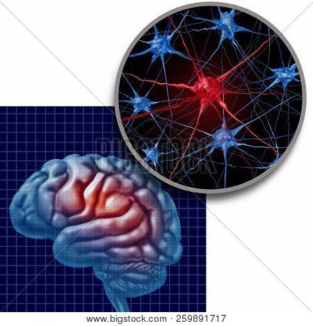Parkinson Brain Anatomy Concept Parkinsons Patient Disease And Parkinson Disorder Symptoms As A Huma