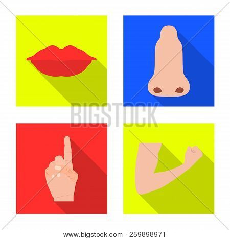 Vector Illustration Of Human And Part Icon. Collection Of Human And Woman Stock Vector Illustration.