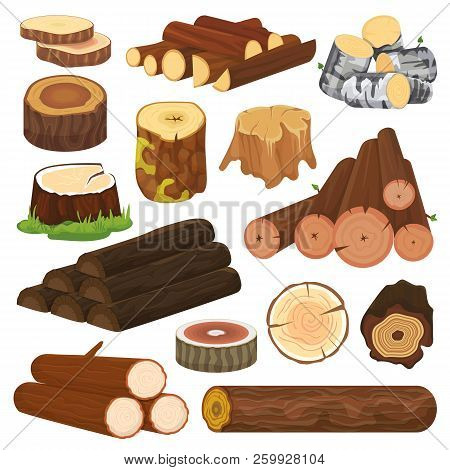 Log Vector Tree Lumbers Or Logging Trunks And Hardwood Of Wooden Timbered Materials In Sawmill Illus