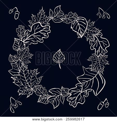 Vector Wreath Border With Maple, Birch, Oak, Acorn, Tulip Tree Leaves, Seeds And Acorns For Back To