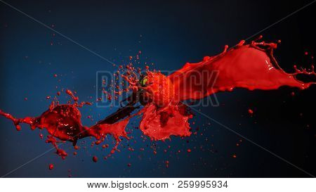 Red Paint Splashing With Ball Isolated On Blue.
