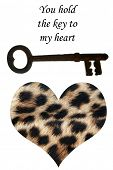 "antique skeleton key with real lepopard fur heart and text that reads ""you hold the key to my heart"" isolated on white with room for your text or images poster"