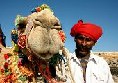 Head of a camel on safari - desert,  India poster