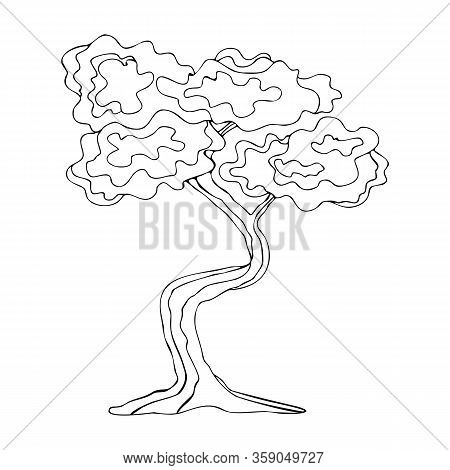 Japanese Bonsai Tree. Isolated Black Outline On A White Background. Hand-drawn Coloring Book For Adu