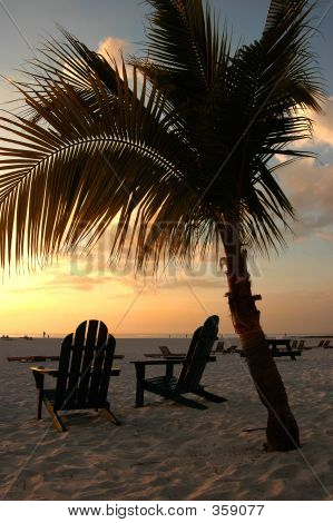 Beach Chairs And Palm