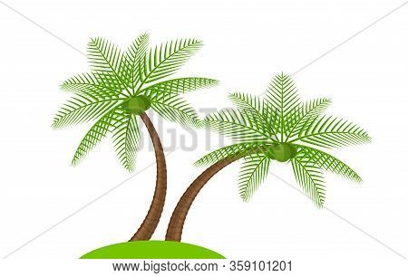 Two Coconut Tree Simple Isolated On White, Illustration Coconut Palm Tree, Coconut Tree For Clip Art