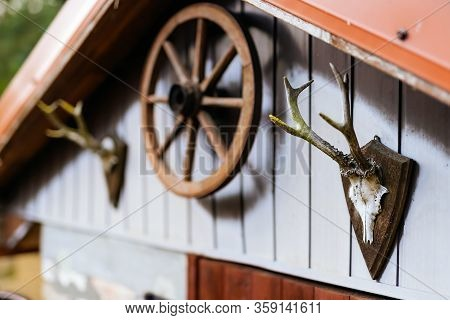 Wooden Shed Or Hut With Antlers And Cart Wheel Decoration Over Doors. Trophy From Deer Skull With An
