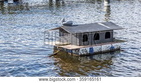 A House For Ducks, A House Where Ducks Can Have A Nest And Lay On Eggs. Floating House With A Decoy