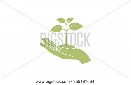 Hand Holding Young Plant. Eco Concept - Plant With Ground In Hands. Environment Related. Save Planet