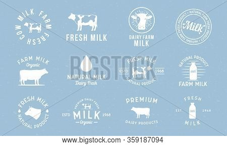 Dairy And Milk Products Labels, Emblems And Logo. Milk Logo Set With Cow Silhouette, Milk Drop, Bott