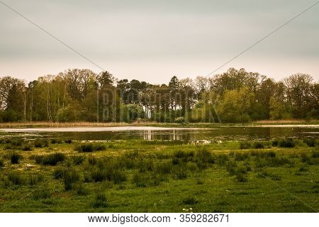 Wetlands And Forest In The Southern Sweden Landscape Called Skåne (scania) On A Gloomy Spring Day