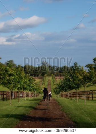 A Woman And Her Horse Walk Away From The Camera Along A Tree Line Path Towards A Paddock.