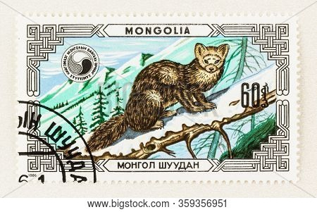 Seattle Washington - April 2, 2020: Close Up Of Mongolia Stamp With Sable, Commemorating Wildlife Co