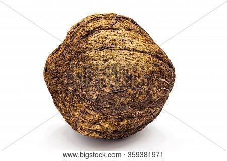 Brazilian Nut, Inside The Coconut, Known As