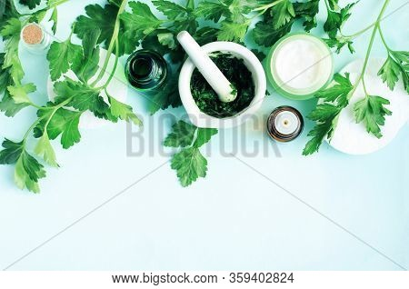 Herbal Extract Skin And Body Care, Green Fresh Leaves Of Healthy Parsley Plant Top View Blue Backgro