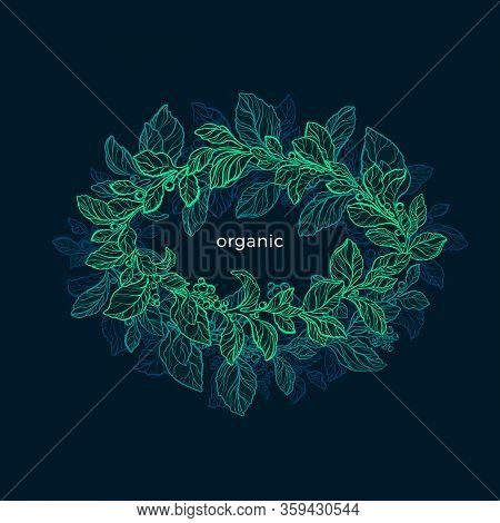 Nature Circle Frame. Vector Green Foliage On Black Background. Night Jungle. Hand Draw Sketch, Bio D