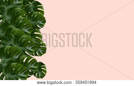 Tropical Background. Flower And Palm Wallpaper. Vector Jungle Illustration. Exotic Tropical Jungle R