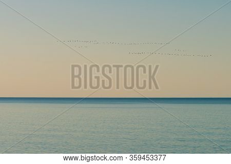 A Calm And Peaceful Picture. Calm Sea And Birds Flying In A Wedge.