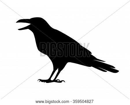 Black Silhouette Raven Bird Cartoon Crow Design Flat Vector Animal Illustration Isolated On White Ba