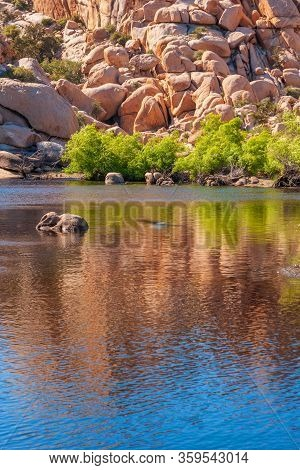 Landscape With Rocks Reflection In The Lake, Joshua Tree National Park, California, Usa