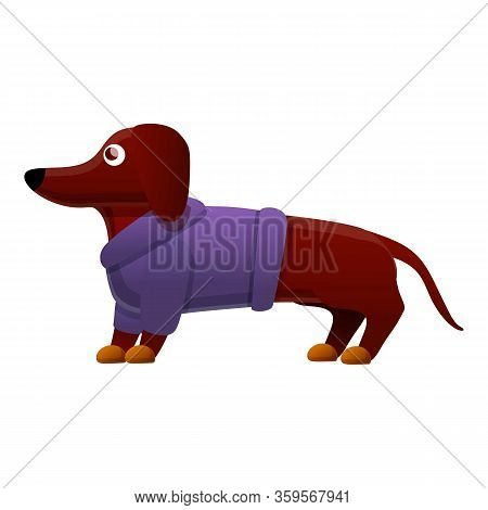 Dachshund Clothes Icon. Cartoon Of Dachshund Clothes Vector Icon For Web Design Isolated On White Ba