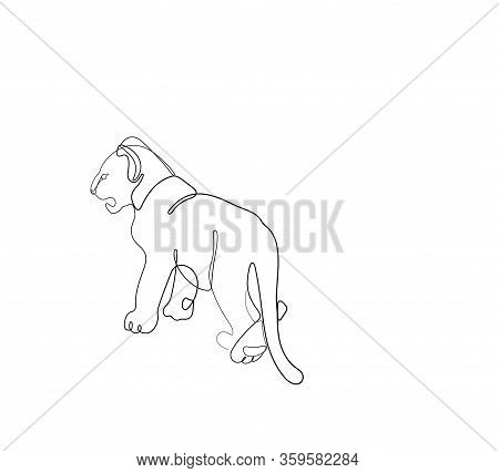 Lion Cub One Line Drawing Continuous Line Vector