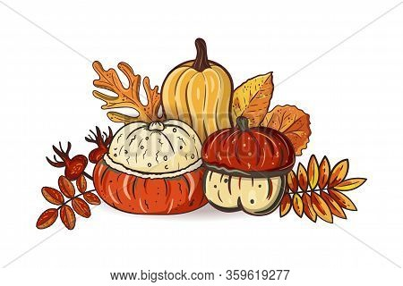 Autumn Leaves And Pumpkins Isolated On White Background. Seasonal Oak, Hawthorn, Aspen Leaves With G