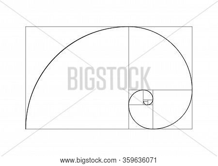 Golden Ratio Vector Proportion Spiral Section. Fibonacci Golden Ratio Geometry