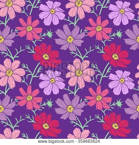 Pink And Violet Cosmos Flowers Seamless Pattern On Purple Background