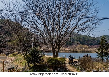 Chungju, South Korea; April 3, 2020: Unidentified People Gather Next To Pond At Public Park Ignoring