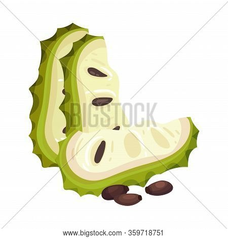 Sliced Soursop Fruit Or Guanabana With Dark Green Rind Covered With Thick Thorns Vector Illustration