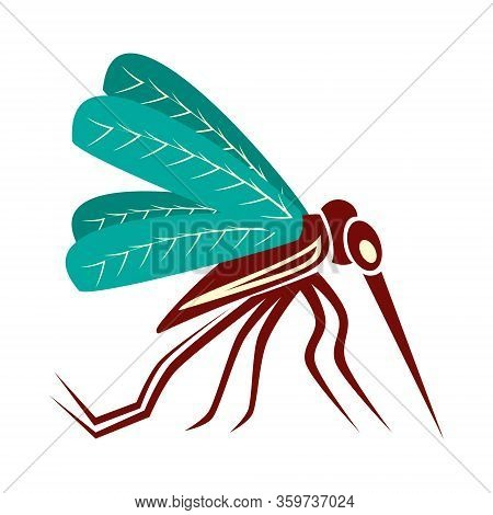 Vector Mosquito Close Up Side View Isolated On White.
