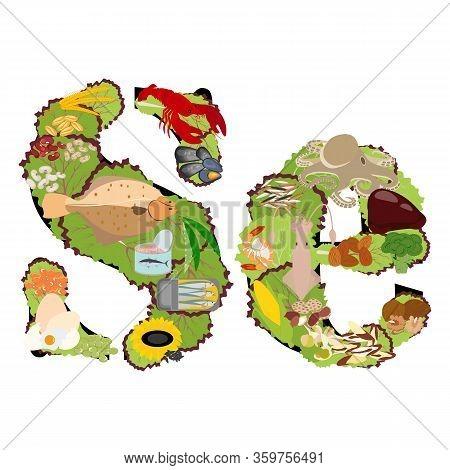 Selenium Se Microelement In Food Vector Illustration