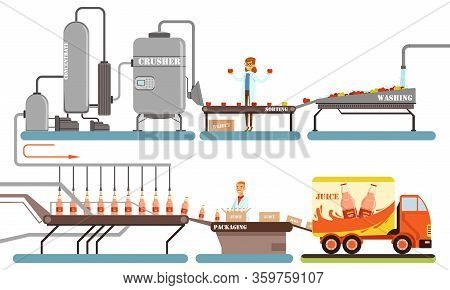 Juice Production Process, Washing, Sorting, Crushing, Packaging Automated Line Vector Illustration