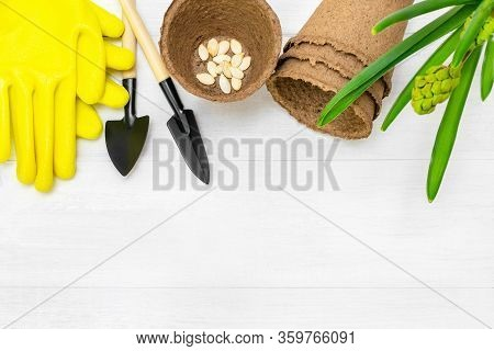 Top View Of Garden Tools, Seeds Of Pumpkin, Peat Seedlings Pots And Yellow Protective Gloves Located