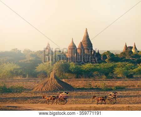 Horse Buggy Travels Across Plains Of Bagan Against Beautiful Bell-shaped Stupas Myanmar Burma