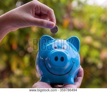 Piggy Save Money Concept, Piggy Bank On Nature Background, Piggy Save Money Concept