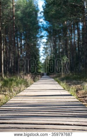 Wooden Path In Trakai Historical National Park, Botanical Zoological Reserve, Cognitive Trail, Long
