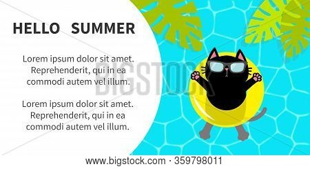 Hello Summer Banner Flyer. Swimming Water. Pool Party. Black Cat Floating On Yellow Pool Float Water