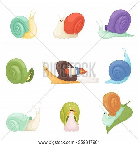 Snails Cartoon. Characters Funny Insects Animals Vector Symbols Of Slow. Illustration Funny Gastropo