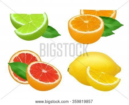 Citrus Products. Lime Lemon Grapefruits And Orange Natural Healthy Fruits Vector Food Realistic Pict