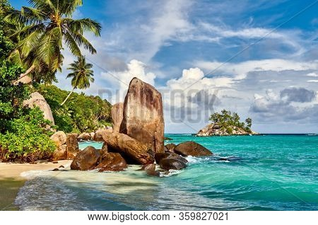 Beautiful beach with palm tree and rocks landscape at Seychelles, Mahe