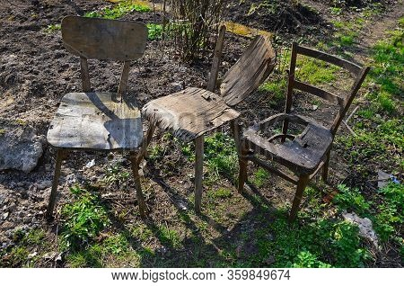 Three Old Ruined Wooden Chairs On The Infield