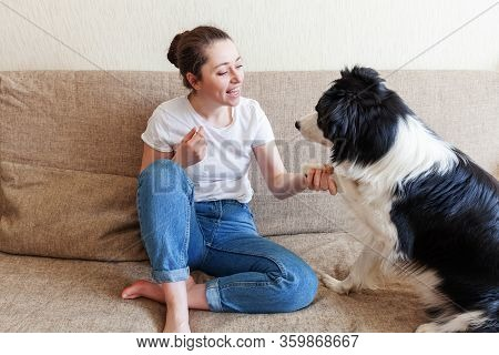 Stay Home Stay Safe. Smiling Young Attractive Woman Playing With Cute Puppy Dog Border Collie On Sof